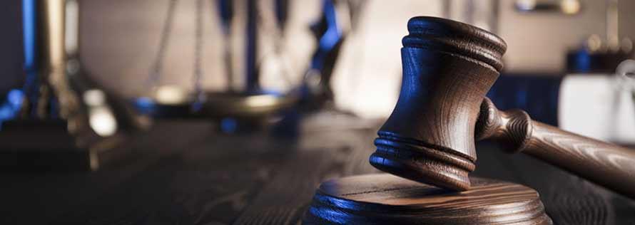avocat 6